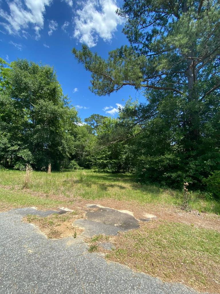A newly surveyed lot.  .55 acres.  Build your home.  Nice residential area.  Quit small quaint town.