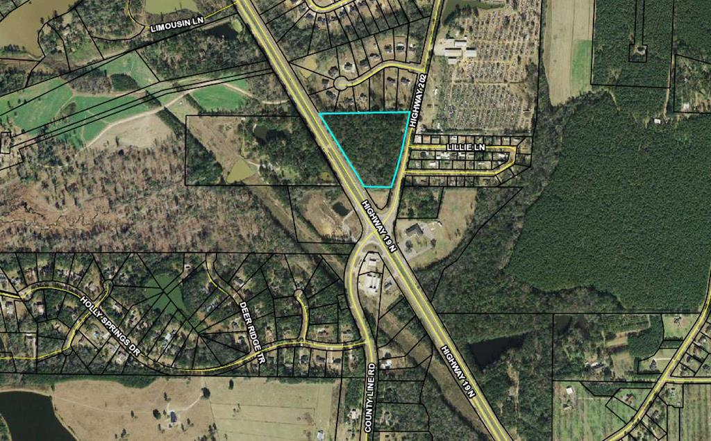 Undeveloped land /development potential, 10.09 wooded acres. This tract has been owned by this owner since 1972