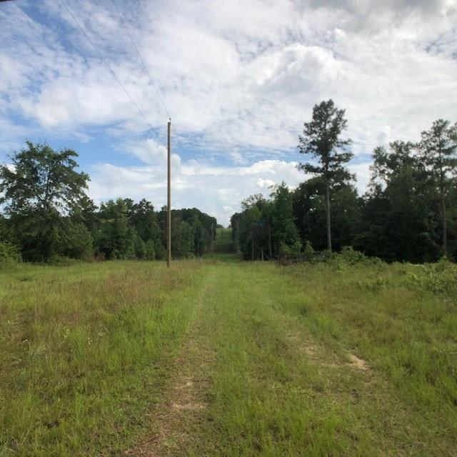 Beautiful 25 +/- acres of mostly timber land in Decatur County, very private and secluded, enter a private entrance into some fantastic hunting land!!! 2 creeks on the property, property must be subdivided. Around 20 acres of woods, easy access to Georgia power. Owner will grant an easement, property subject to a survey.