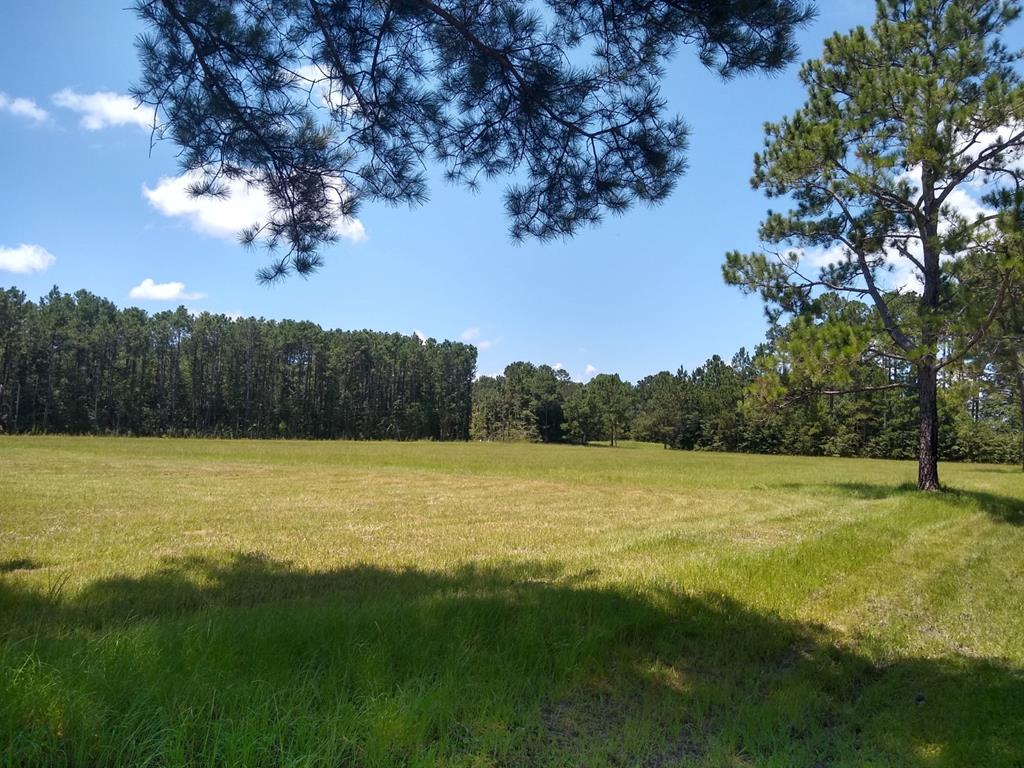Lot 3  is 17.78 acres. Beautiful homesites. Paved road frontage on Banks Road and shared driveway easement to the lot. Great builder potential. Lot  3 is in a 10 year conservation easement.