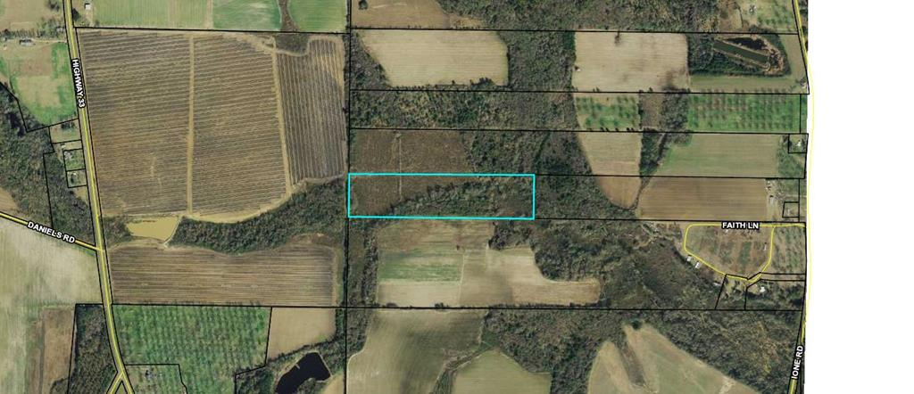 20+ acre stretch of mature pines near Pavo Ga! Excellent land and timber bordered by managed farmland. Call your favorite Realtor TODAY!!