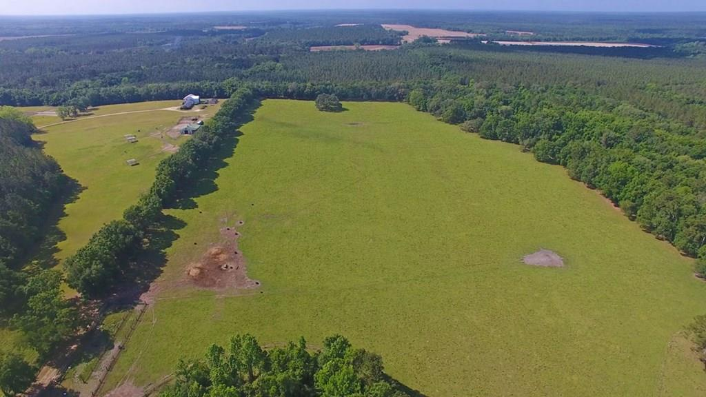 29 +/- acres located in Boston, GA. Frontage on Watkins Rd. Mixed woods with open pasture. Many possibilities for this hard to find tract. Call today for showing.