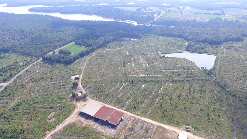 This commercial  greenhouse/nursery is located at 1741 GA Highway 112 N in Cairo, Georgia. Located  on a 306.42-acre site. The property includes a 1,250 square foot single-story office building, a single-story loading dock/label room building totaling approximately 46,570 SF, a single-story maintenance building totaling approximately 3,000 SF, a single-story break room building totaling approximately 2,500 SF, and a chemical building totaling approximately 1,500 SF. Additionally, numerous greenhouse structures and small restroom buildings are on the property. All of the structures are built slab-on-grade.The property also has three ponds and numerous access roads. Limitless possibilities. Call today for a showing.