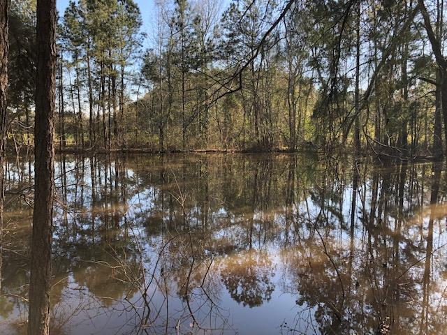 10 ACRES FOR UNDER $90,000 IN THOMAS COUNTY WITH A POND!!!! This acreage is gorgeous and heavily wooded, also has a beautiful pond on the property. Lots of timber and heavily wooded, this would make a great hunting property or ideal to build your dream home.