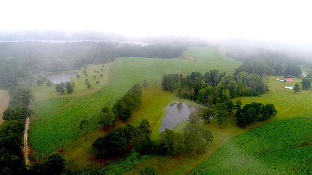 Eagles Bluff Farm - This beautiful rolling-hills property adjoins Tired Creek Lake land on the east side of the lake.  It has approximately 2,000 feet of highway frontage located on GA Hwy 112 and only three miles from the Cairo city limits and Tired Creek Country Club.  This property consists of 99.5 +/- acres with about half in cultivation.  The remaining property is a combination of three pond sights, pastures and woodland. There are three well maintained houses on the property with each having deep wells. The 4 bedroom 3 bath main house contains approx. 2250 square feet of living area and an oversized garage, a 50 covered back porch overlooking an in-ground saltwater pool with brick fence enclosure and pool house.  Also, on this homesite is a 30 x 30 Tyson building with two automatic overhead doors along with an 18 x 32 lean-to. With this one-of-a-kind property, it offers a lot of possibilities including owning your own mini-plantation with rental income, hunting (deer and turkey), fishing or development potential.