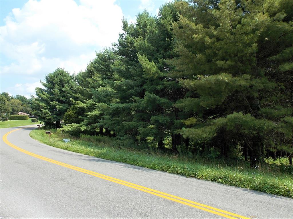 This nice 0.6 +/- acre building lot features nice paved road frontage, county water supply, cleared area at the front, and planted pines in the rear! This would make a nice lot for a walk out basement. Conveniently located close to Interstate 77!