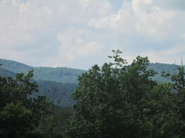 Over 8 acres with great view of the mountains. A variety of apple, cherry and walnut trees and blueberry bushes. Cleared area for a house, modular or mobile home with well and septic. Large area of woods and small stream. Perfect home site. Owner Agent.