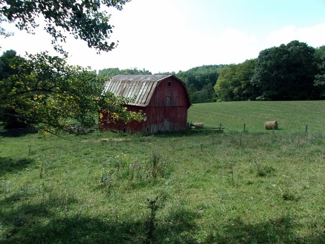 100 acre farm.  70% open & 30% wooded.  streams, and springs.  Big trees.  Low density farming in the area makes this a good investment at $3950 per acre.  Paved road frontage.  3 bedroom/2 bath double wide on the property with attached 2 car garage.  24x32 barn.