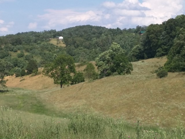 Beautiful farm in the mountains of Wythe County 95.90 ac. with approx.75% open pasture and hay fields. Great views from ridge tops with great building sites. Property joins two state maintained roads with access from each has water on both sides of the property. Abundant wildlife in the area with stocked trout steams nearby. Close to Jefferson National Forest with unlimited horse trails.