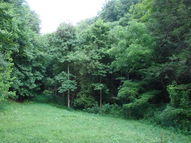 TBD Jessee's Mill Road, Cleveland, VA 24225