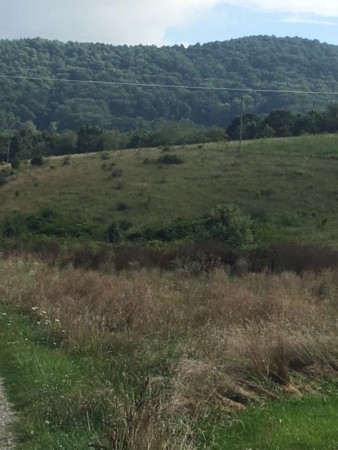 1.051 ACRE BUILDING LOT LOCATED ON BRONCO RD. IN HILLSVILLE, VA. CLEAR AND MOSTLY LEVEL. TAKE A LOOK TODAY!