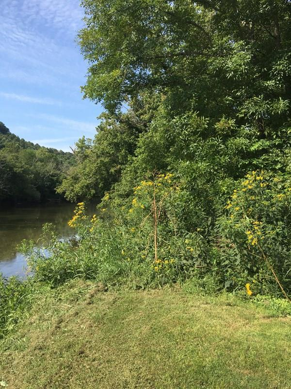 River front property!!!!! River access with over 5 acres above the road partially cleared for vacation or full time residence. Great access for water sports.  PRICE REDUCED TO $39,500.