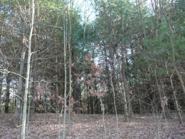 THIS PROPERTY IS ON THE MARKET TO SATISFY MEDICAID REQUIREMENTS.  This building lot is located the village of Konnarock.   A mobile home was once on this property and a septic tank was installed, but its condition is unknown.