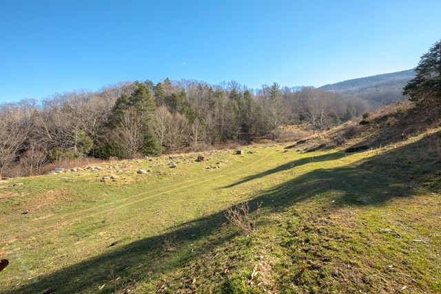 This is the property you've been looking for to build that cabin or permanent residence on top of the hill with magnificent mountain views! This +/-56 acre parcel offers not only those great views, but also provides you with the privacy and seclusion that everyone desires, yet only a few minutes from I-77 in Rocky Gap, VA and the WV/VA state line. Mostly open but still backs up to the forest and has plenty of wooded areas to hunt as well. Currently being used for grazing cattle. Mostly fenced and even has creek frontage! Ideal for recreational or residential property.
