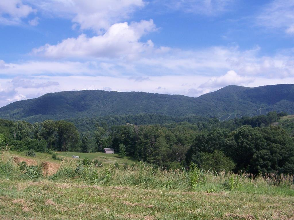 GORGEOUS LOT ATOP MT TOP MEADOWS SUBDIVISION IN ELK CREEK, VA. THIS TRACT IS PARTIALLY OPEN AND PARTIALLY WOODED WITH A SMALL STREAM LOCATED AT THE BOTTOM OF THE PROPERTY. THIS IS THE IDEAL LOCATION TO BUILD YOUR MOUNTAIN GETAWAY. VERY PRIVATE, YET EASILY ACCESSIBLE YEAR ROUND. THIS IS NOT YOUR TYPICAL SUBDIVISION. THIS IS A RURAL DEVELOPMENT THAT PUT EACH HOME SITE IN POSITION TO TAKE ADVANTAGE OF THE TREMENDOUS VIEWS, WHILE AT THE SAME TIME PRESERVING ALL THE NATURAL BEAUTY. YOU FEEL LIKE YOU ARE ON TOP OF THE MOUNTAIN ALL ALONE. EACH TRACT CONSISTS OF 5 OR MORE ACRES, GIVING ALL PARCELS PLENTY OF ELBOW ROOM, SO YOU ARE NOT POSITIONED ON TOP OF YOUR NEIGHBOR. THE VIEWS ARE AMAZING! CALL FOR ADDITIONAL INFORMATION -- there is now underground power to this property!
