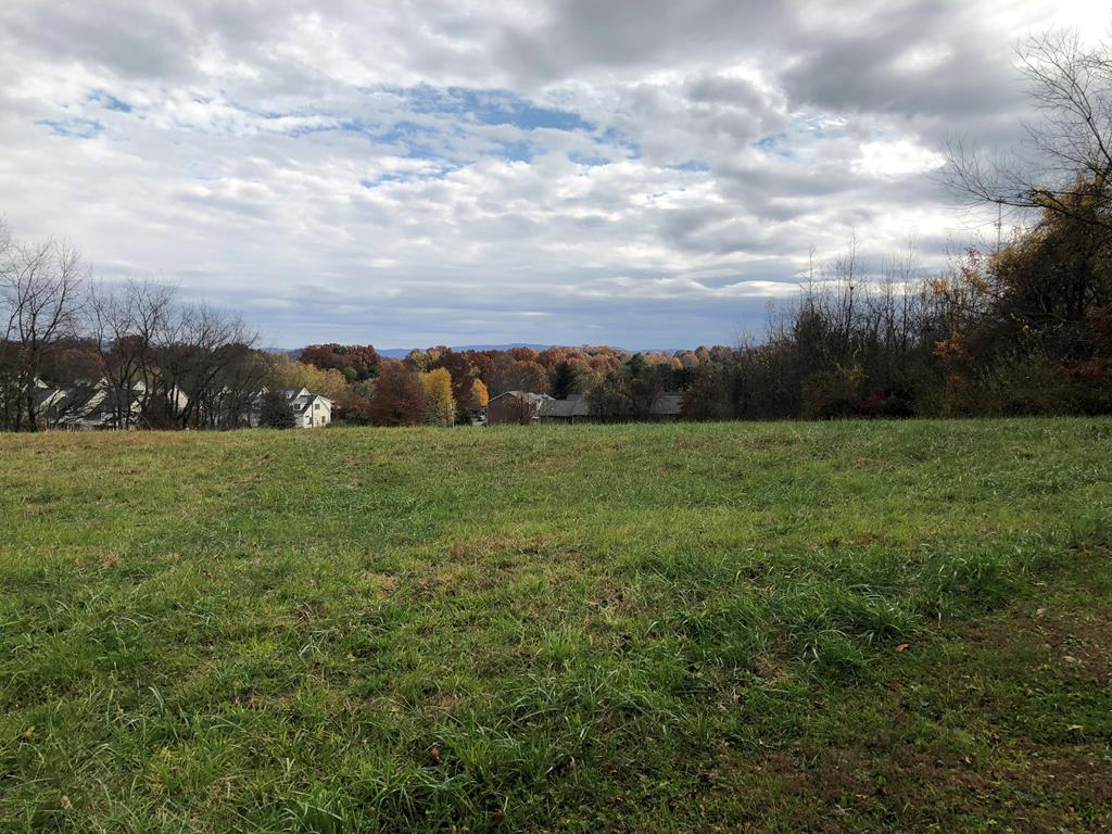 This beautiful lot sits in the heart of town. Close to the Barter, the Coomes center, the hospital!!! Build your dream home in the heart of town!