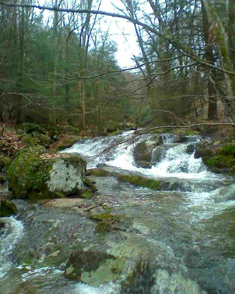 13.288 acres of secluded mountain land waits for you at the end of a private driveway.  An absolutely beautiful stream with multiple waterfalls and a perfect building site or camper spot nearby.  Sit and enjoy the sounds of a cool mountain stream from your front porch.  Mature hardwood and pine.  Rock outcroppings.  A camper and storage building are on site.  The camper needs work to be habitable but isn't in poor condition.  Owner is selling camper at no value.  If you're looking for mountain land, this is the perfect property for you.  A short ride via horseback to Jefferson National Forest and multiple horse trails.  Come take a look!