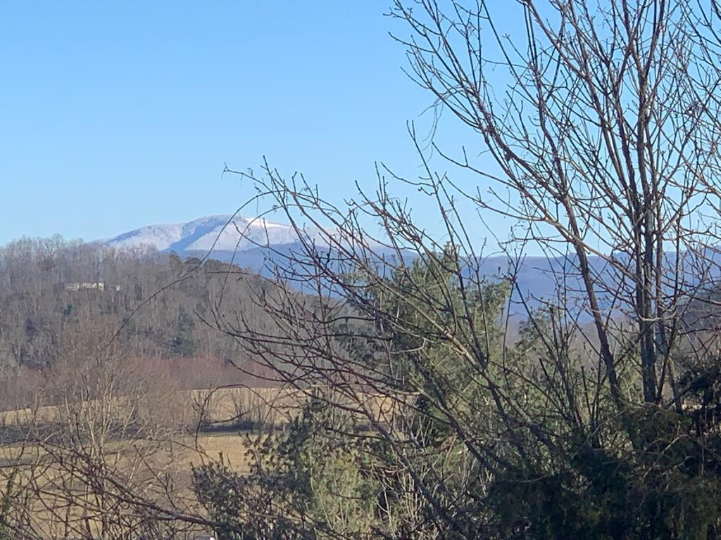 Wake up to a beautiful view of Whitetop Mountain and life on a quiet cul-de-sac in Southview Estates when you buy and build here. This single family building lot is convenient to shopping, entertainment, the Virginia Creeper Trail, and all the amenities of life in charming and historic downtown Abingdon. With just a five minute drive to I-81, travel is convenient, and Tri-cities airport is just 30 minutes away. This lot offers potential both to those who want to build and to investors. It is priced to sell.