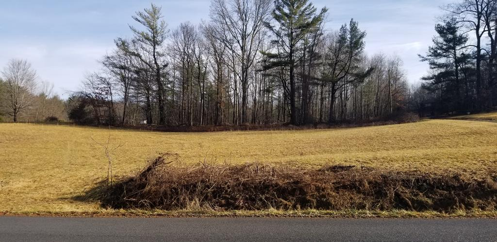 This 5 acre building tract sits on a paved road in the middle of the desired  Baywood community where you are only minutes from Galax or Independence and only minutes from Route 89 that leads you to Mt Airy NC.  The mostly wooded property is 3/4 covered with hardwoods and has an abundance of wildlife.Toward the back of the property it is mostly secluded and has a beautiful building site. With the Blue Ridge Parkway only a few miles from this property you can drive and see some of the most scenic views on the east coast. If you're looking for a nice secluded tract to build on for a fulltime resident or just a weekend get away this is worth taking a look at. THE ONLY RESTRICTIONS IS NO SINGLEWIDES