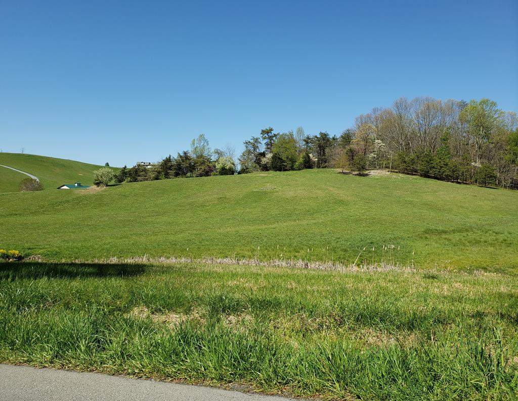 6.30 acres of beautiful flat to rolling property for your future home.  There's 470' of road frontage, underground electricity and cable;  with lots of elbow room for a home.     Approx 75% cleared; a really peaceful location.  Restrictions on file in listing office.