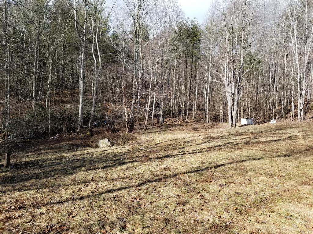 EXCELLENT 90.06 ACRE TRACT LOCATED IN THE FLATRIDGE COMMUNITY OF GRAYSON COUNTY, VA, WITHIN THE BLUE RIDGE MOUNTAIN RANGE.  THIS TRACT HAS IT ALL FOR THE OUTDOOR ENTHUSIAST:  PLENTIFUL WILDLIFE FOR THE AVID HUNTER OR WILDLIFE WATCHER, NUMEROUS MOUNTAIN SPRINGS AND BRANCHES THAT ORIGINATE ON THE PROPERTY, YOUR OWN CROP OF BRANCH LETTUCE TO HARVEST IN THE SPRING, A NICE MIXTURE OF MATURE TIMBER (MOSTLY POPLAR, OAK AND WHITE PINE), FAVORABLE TOPOGRAPHY FOR HIKING, BIKING AND ATV RIDING.  LOCATED ON THE PROPERTY IS AN OLDER SINGLE WIDE THAT CAN BE USED AS YOUR HUNTING SHACK WITH A SPRING WATER SOURCE AND SEPTIC SYSTEM.  LONG ROAD FRONTAGE ALONG FLATRIDGE ROAD WITH CONVENIENT ACCESS TO POTENTIAL BUILDING SITES FOR THAT NEW CABIN.  POTENTIAL GRAVITY FED WATER SOURCES FOR SUSTAINABLE LIVING.  DON'T MISS OUT ON THIS OPPORTUNITY TO OWN A GREAT BLUE RIDGE MOUNTAIN BOUNDARY THAT OFFERS EVERYTHING YOU NEED!