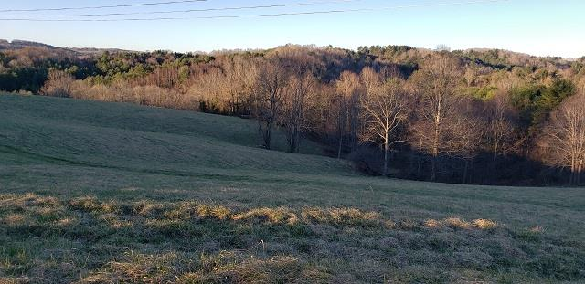 TBD Country Rd., Austinville, VA 24312