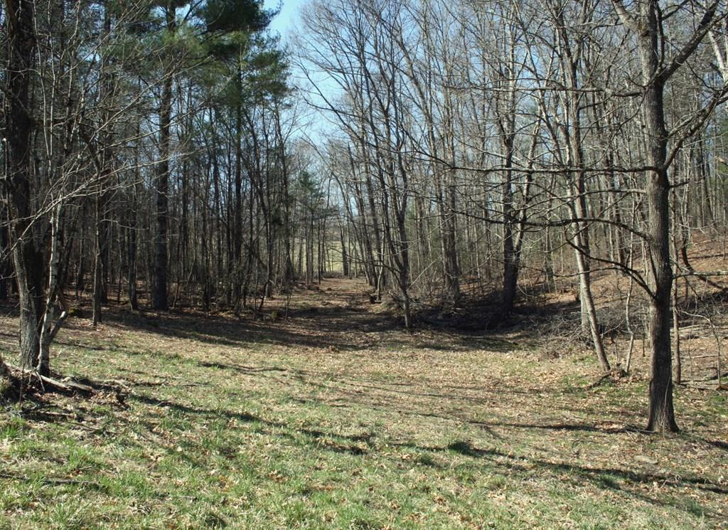 This Property is located near the Wythe Co./ Smyth Co. line with Close proximity to National Forest and Hales Lake and some of the best Horse Trails in Southwest Virginia. A well and electric already exist on the property and ready for a camper or cabin.