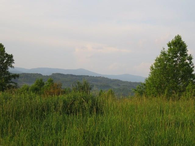 Beautiful property with magnificent views; located only a few minutes from town & I-81; currently used for grazing cattle but offers several building sites from which you can enjoy the mountain views. Lots of wildlife & birds for the nature enthusiast. Perfect place for your own private retreat. The property is crossed fenced into 5 pastures for livestock.  Approx. 13 acres of timber (will not be ready to cut for approx. 10 more years). Also approx. 80 oak trees were planted on the property in the past few years. Public water meter was installed on this property in April 2016. Water line is installed for watering livestock; also there is a spring on the property.  Property is currently in the land use program for lower taxes.