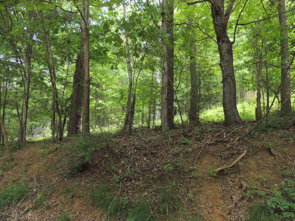 This property offers two tracts of land with a great location near the New River. Nice wooded building sites. Just outside of the town of Fries, near schools, shopping and public boat landing. Fantastic Price!!!