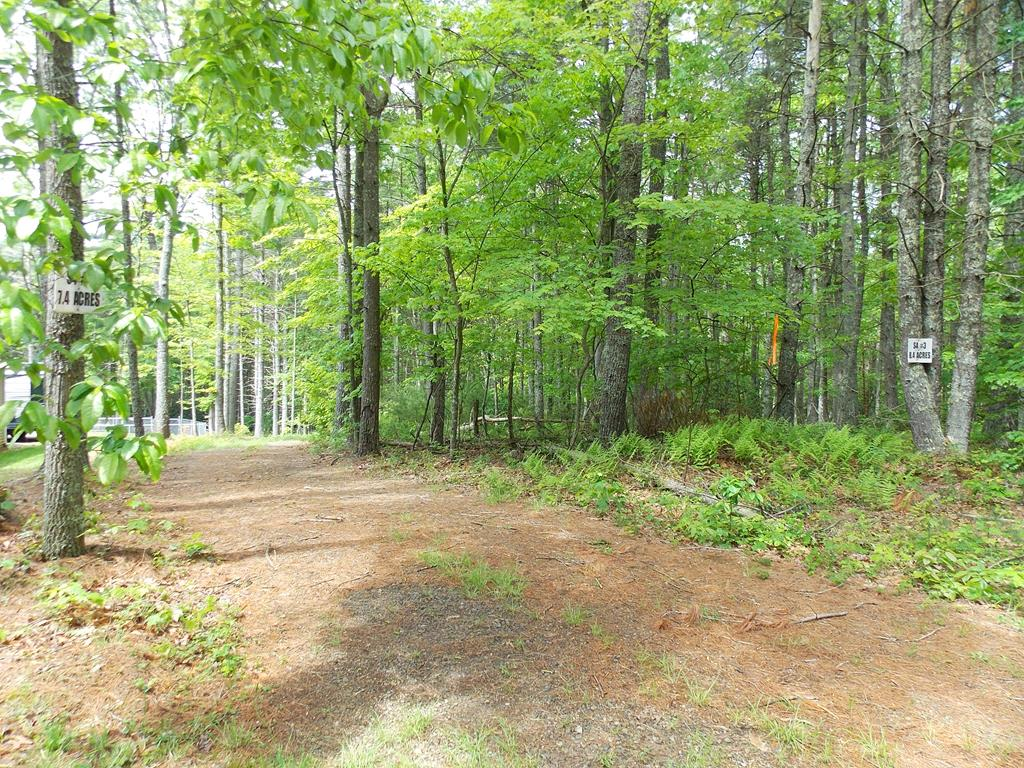 This nice 15.80 acre parcel consists of Lots 3 and 4 of the Country Woods Subdivision!  Features include paved road frontage and public water!   The land lays nice with a gentle slope and beautiful wooded land and is priced to sell at $25,000 below current tax assessment!  Conveniently located just minutes from Highway 100 and Lake Ridge Resort!