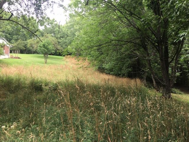 GREAT BUILDING LOTS!! IN TOWN WITH PUBLIC WATER AND SEWER AVAILABLE!! PAVED STREETS AND PARTIALLY WOODED!! PRICED TO SELL