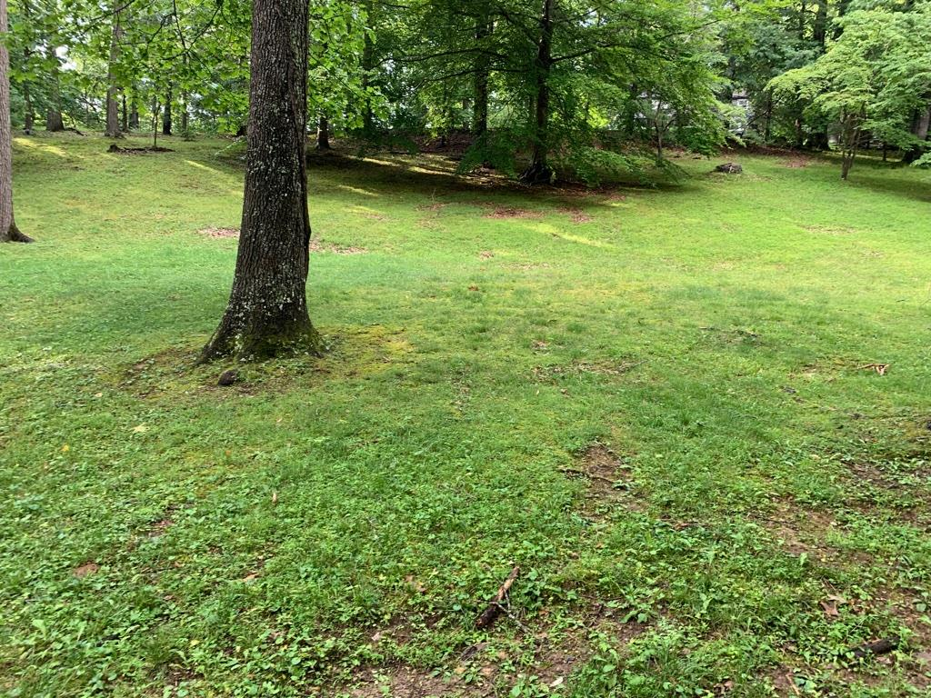 Beautiful ~0.47 acre lot for sale in an established neighborhood in Marion.  This lot features a nicely maintained lawn with a selection of mature trees.  Great amount of road frontage.