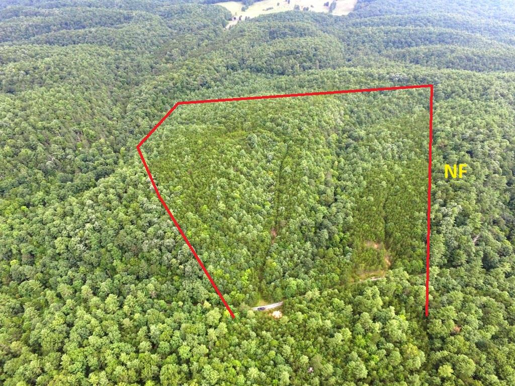 A secluded and rural hunting tract adjoining the Jefferson National Forest. This 48 acre tract offers old logging roads to enjoy your atv or for walking trails.  Good hunting in this part of the county.  Perfect spot for a hunting camp or enjoy the peacefulness of nature.