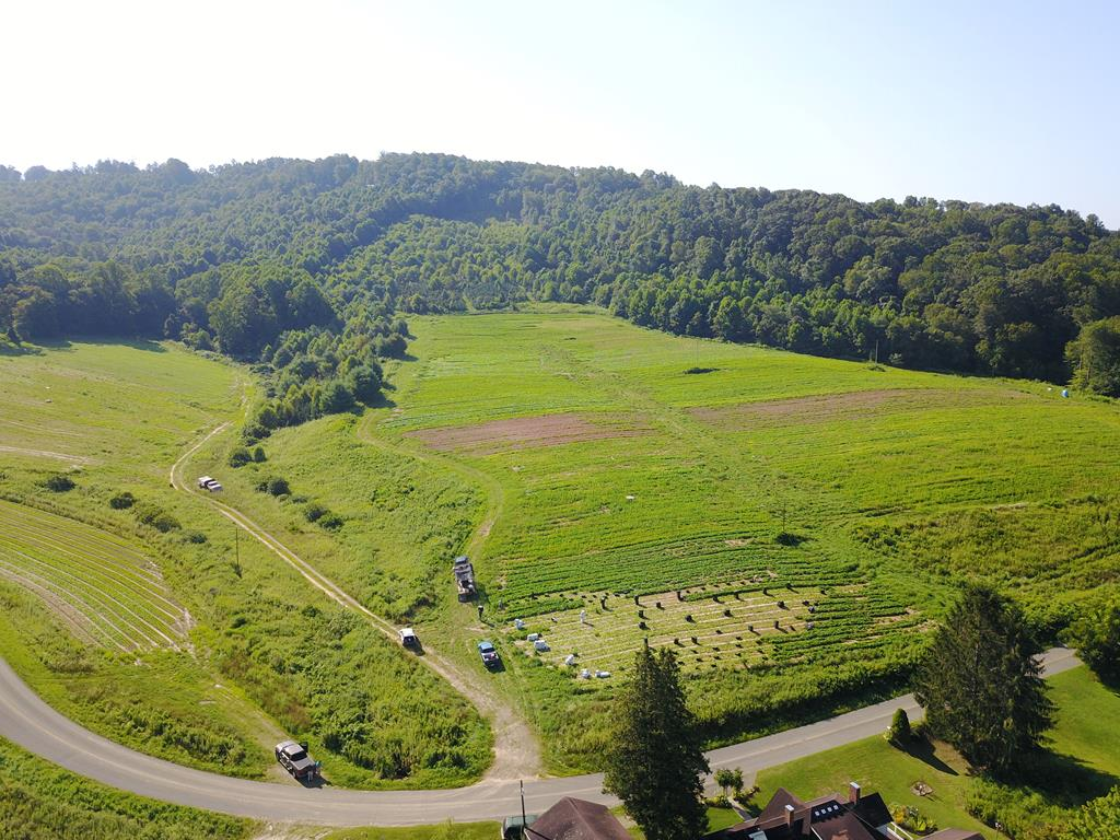 46 ACRES OF PRIME FARM LAND IN THE HEART OF CARROLL COUNTY. BOLD CREEK RUNNING THROUGH THE PROPETY. THIS COULD BE A GRAZING BOUNDARY OR FOR CROPS. JUST MINUTES FROM INTERSATE I-77