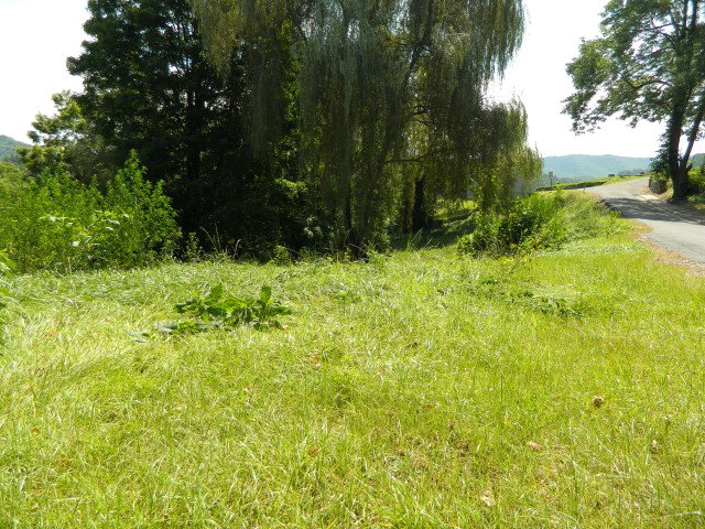 Lot with public water and sewer. Previous dwelling burned down and has been cleared from lot. Adjoining lot can be purchased as well. Cleared, corner lot goes to cemetery property. ****No SWVAR lockbox.