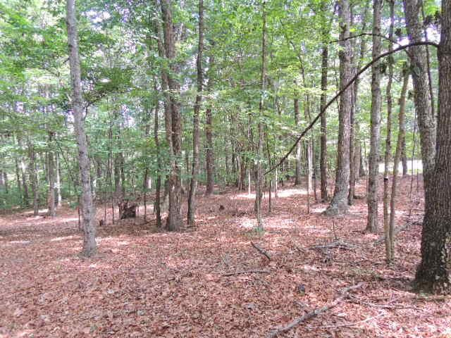 2.09 ACRE BUILDING LOT LOCATED ON SUNNY RD. IN THE FORT CHISWELL AREA OF WYTHE COUNTY.