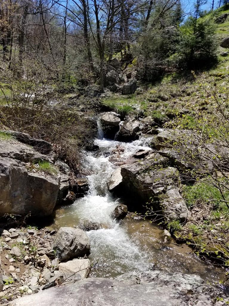 Great views from this 50 acres in Comers Rock area of Elk Creek in Grayson County.   Bold creek with waterfalls and pasture land make up several building sites on this property.   Farmland surrounds this rural setting and great community.