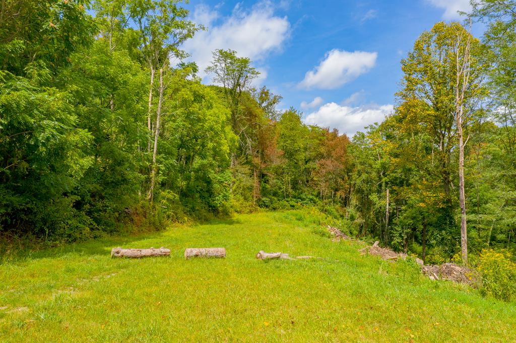 This 3+ acre property is perfect for building a great home. The property is in a natural mountain setting, so you will be able to landscape this property to your own personal style. You are only minutes away from the town of Wytheville. You will live in the privacy of seclusion while having the convenience of a warm and friendly people.