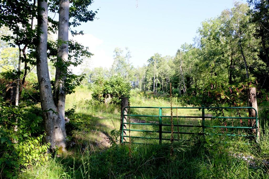 GREAT BUY ON THIS 7.18 SUBDIVABLE PARCEL JUST OUTSIDE THE TOWN OF DAMASCUS, NEIGHBORING PROPERTIES HAVE BEEN SOLD FOR MUCH HIGHER PRICES PER ACRE. UNIQUE FEATURES INCLUDE GATE ALREADY INSTALLED OFF COUNTY ROAD, NATURAL SPRING THAT HAS BEEN A PURE WATER SOURCE TO FOR MANY YEARS!  CLOSE TO APPALACHIAN TRAIL, VA CREEPER tAIL AND STOCKED TROUT STREAMS!  CALL OFFICE FOR DETAILS!
