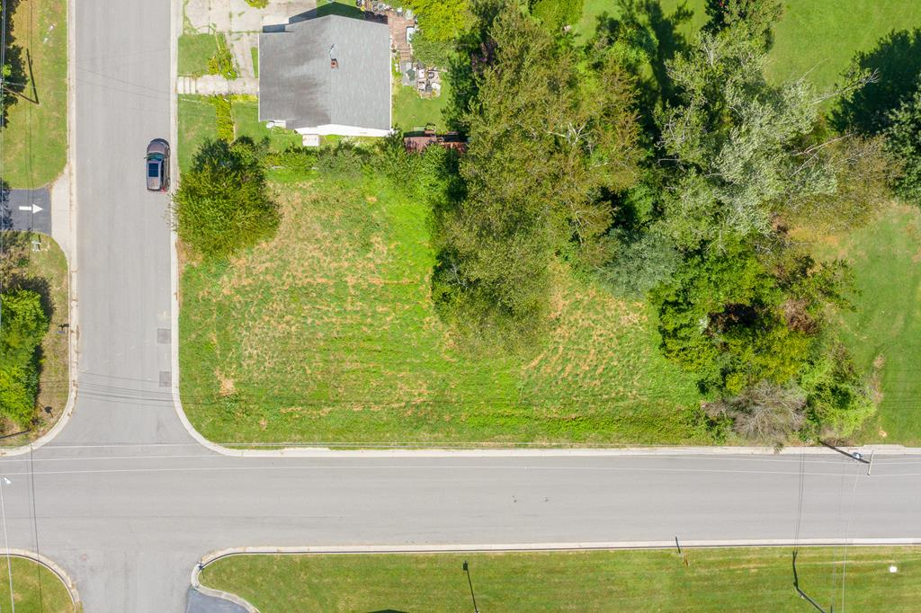 This corner lot is a blank canvas! Ideal for building the home of your dreams, this lot is situated in the town of Wytheville. Close to downtown and the historic district, you can place yourself right next to all of the amenities and events going on in town. With easy access to both interstates, you are just a short drive away from Pulaski County, Bristol, TN, and more. Schedule a showing today!