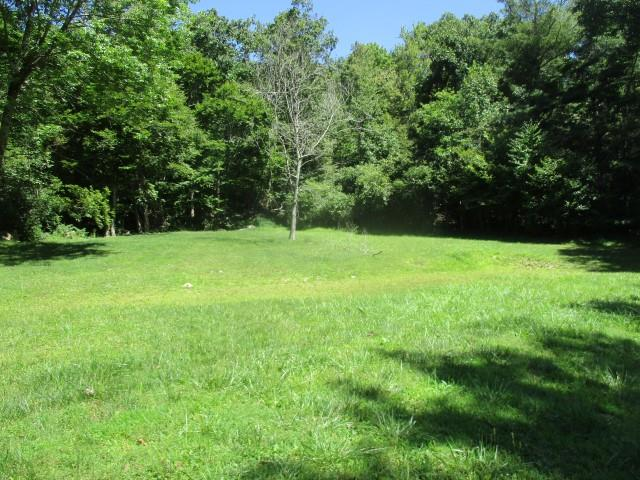 Nice mature wooded land interspersed with grassy areas.  Good frontage on 2 country roads.  Includes both sides of ridge top.  Mountain spring fed branch.  Trails open throughout.  Nice property.