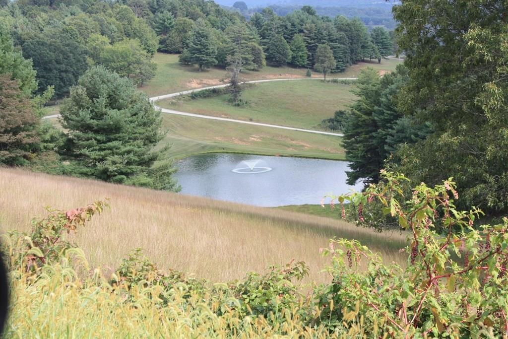 PRICE REDUCED! 2 beautiful parcels in one of the most unique subdivisions in Carroll County. Each parcel in this subdivision has multiple acres,so no neighbor is too close.  This land boasts amazing views and creeks running on both parcels. Close to town and shops, but far enough away to feel secluded. The common area with pond & picnic area are available for owners, and their guests to enjoy. With all of this acreage, there are a number of places to build the perfect home. You will enjoy abundant wildlife, and mushroom hunting. There are multiple mature trees of all kinds. Just a short distance away is the Crooked Creek Fee Fishing area. Near the Blue Ridge PKWY and the Blue Ridge Music Center & only a few miles from Fancy Gap, Hillsville, and Galax. Also just minutes from I-77. Underground electric service is already closeby.