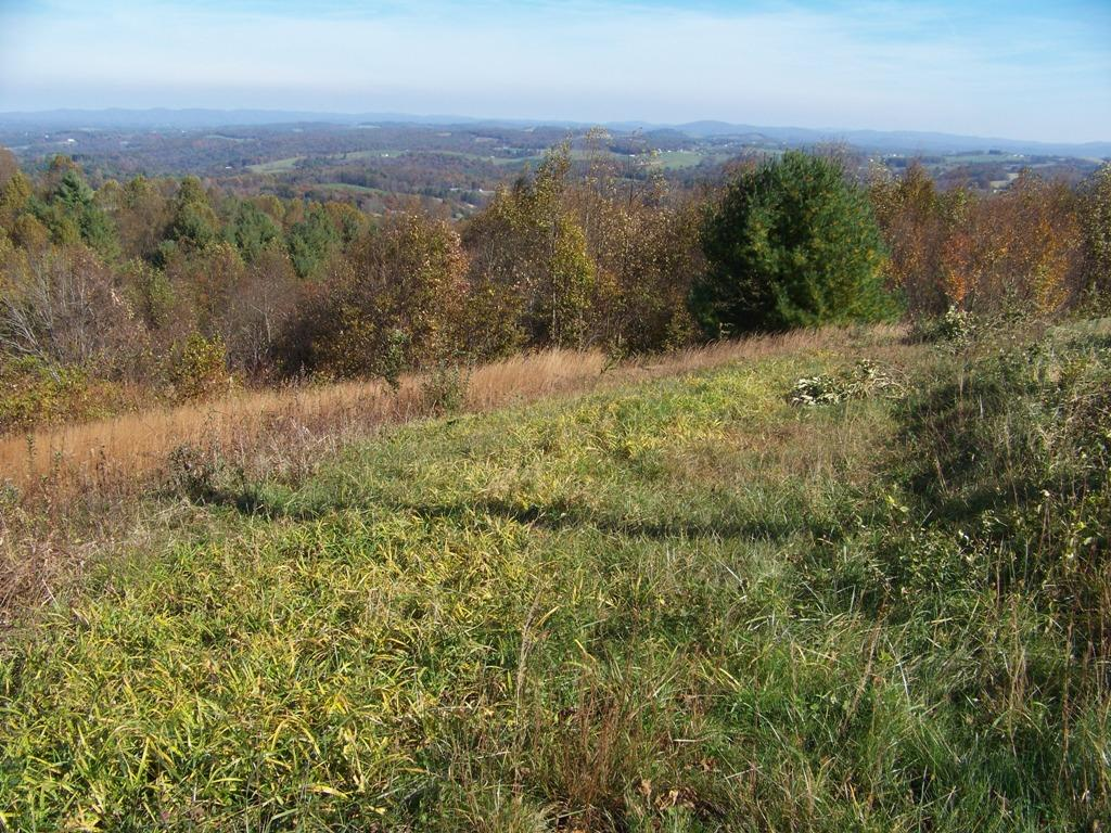 Hunting-Hiking-Four Wheeling-Privacy. This 17.9 acre wooded parcel is just minutes from I-77 Exit 8 and is ideal deer and turkey hunting territory. Great for hiking or four wheeling as there are old logging roads open throughout the property. There are two natural springs on the property as well as a couple of nice building sites for a country cabin. One of these sites would have a long range view with the removal of some trees. Although convenient to Fancy Gap and I-77, this property is private as it is accessed by a deeded & recorded exclusive use 20 ' right of way off of a state maintained paved road. Deeded underground electrical easement to power pole on ROW.  Owner is licensed real estate agent in VA.