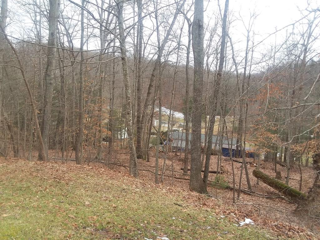 Nice building lot outside of Marion! There are four lots available. Lots are 0.30 acres each. Property is mixed clear and wooded. This is a short lane with few homes, no through traffic.