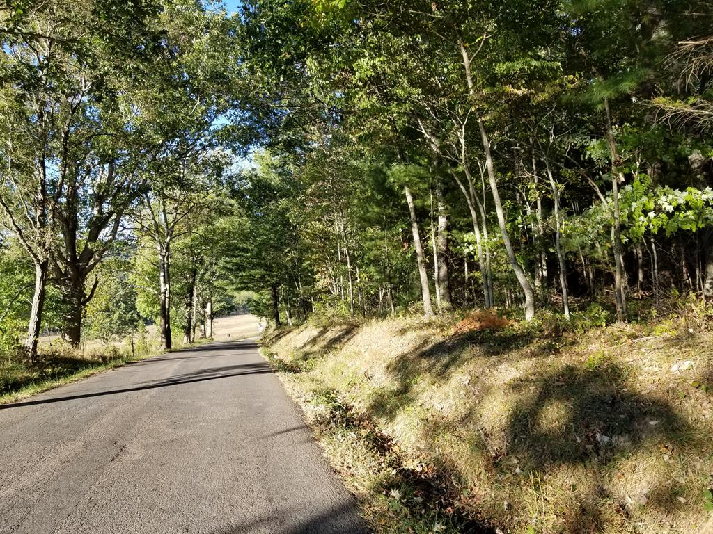 Oh my!  This is a rare find nestled in the Camp community.  Wooded land that is mostly flat, joins the JEFFERSON NATIONAL FOREST, and lies next to the Smyth/Wythe County line.  Very private with numerous building sites.  Hurry, this will not last long.  This property has approx 1244 feet of road frontage and approx. 590 feet that boarders national forest (per 2013 survey).  Great hunting property or excellent property for your dream home.  This would also be a great property to establish vacation rental cabins.  The possibilities are endless.