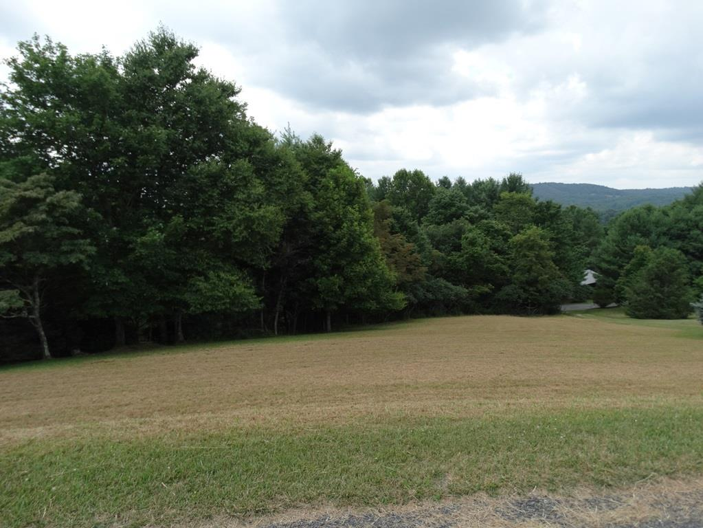 Lot in High Chaparral Subdivision located less than 1 mile from the Blue Ridge Parkway. Great place to build your mountain cabin. Lot does have restrictions. Buyer to determine if there is a water connection.