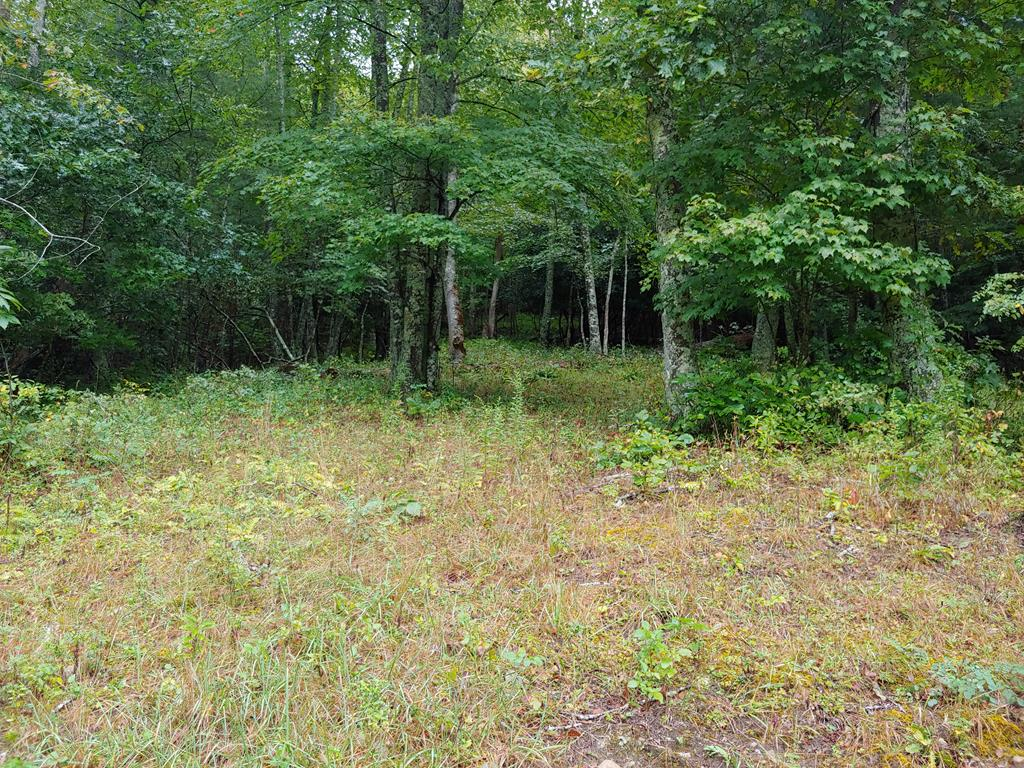 Nice building site in a very secluded area. Features long range views and a spring! Ideal for recreational uses such as hunting, hiking, and ATV riding as well. Home to a variety of wildlife!