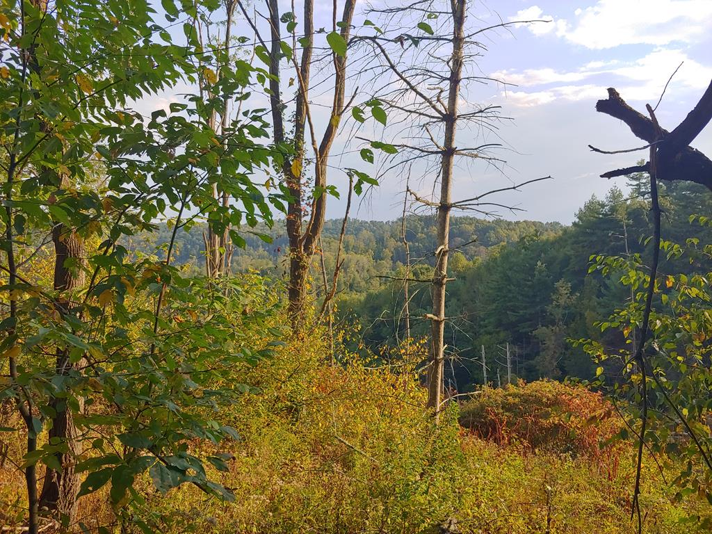 Approximately 30 acres of mostly wooded land in Fries, VA! Very private setting with gorgeous views of the surrounding area. Only 2-3 miles from a national forest with horse trails. Use for recreational purposes such as hunting and camping or clear off some land and build a home!