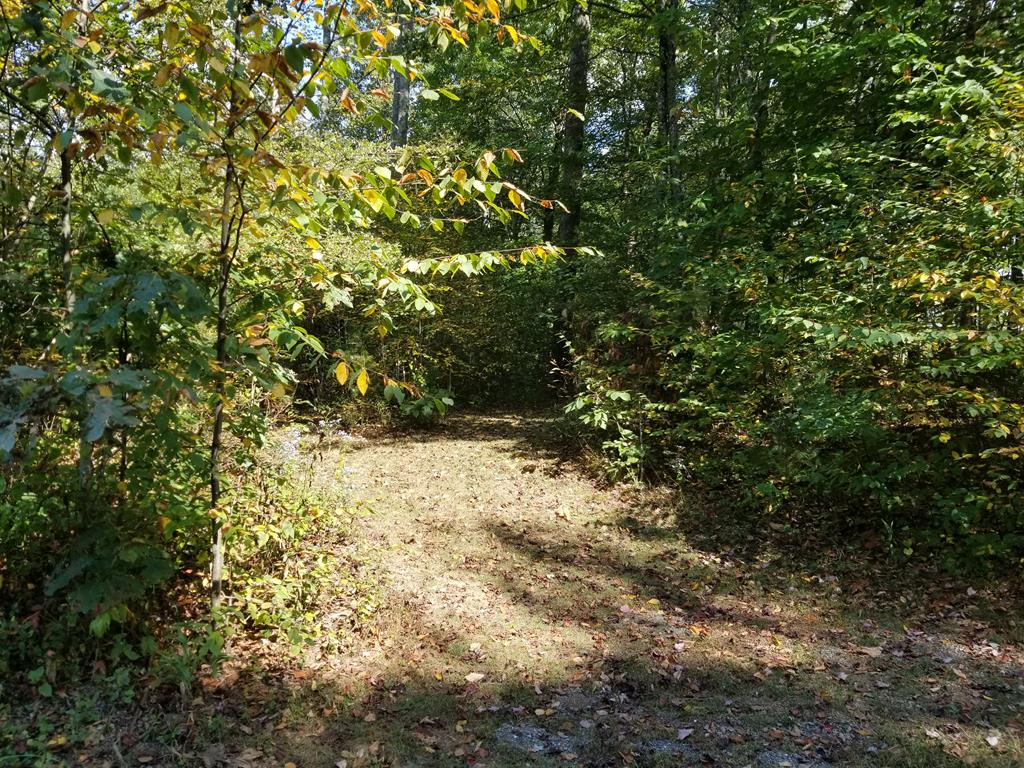 This wooded 5+/- acre tract is on a private gravel road. A nice place to build your dream home. Mobile homes are allowed. The owners do not know if it has been perked. Land is level to the road, then rolls downhill. Would have a view if the trees were selectively cut.