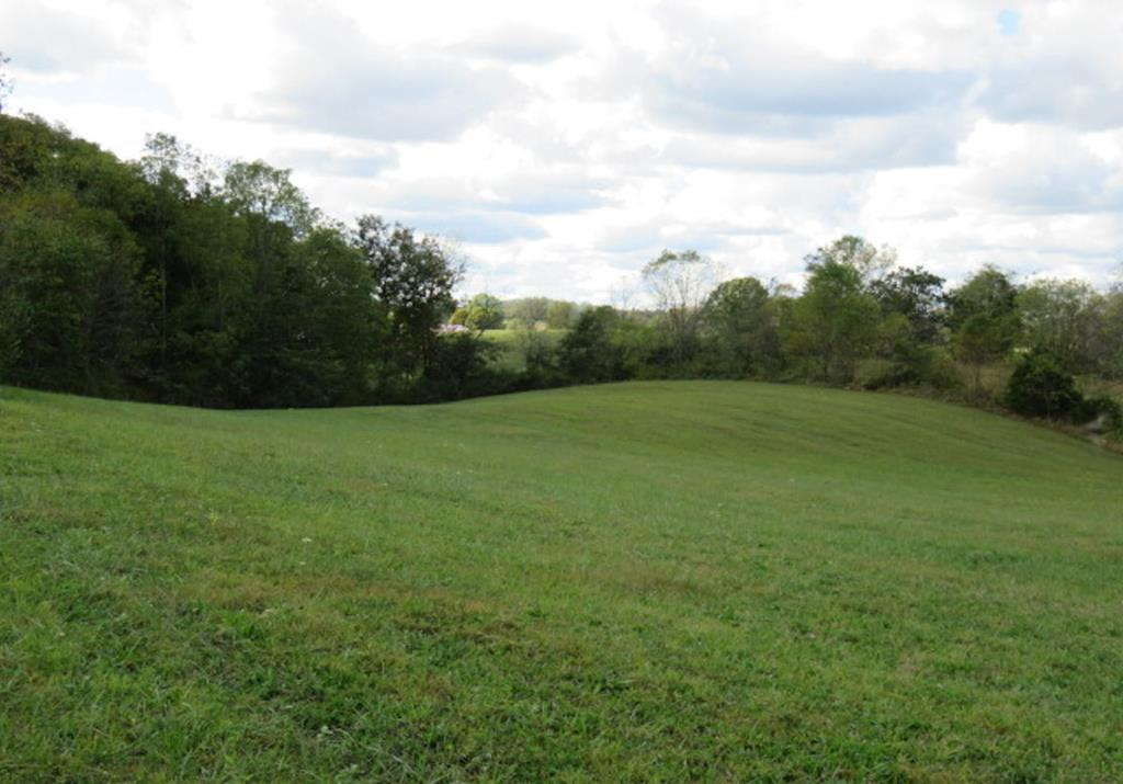 Desirable location between Abingdon & Damascus. Just a short distance from the Virginia Creeper Trail. Quiet & peaceful setting with mountain views. Septic system has already been installed for a 3 bedroom dwelling.